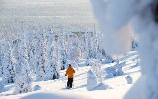 Горнолыжный курорт Юлляс, Финляндия
