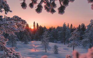 Количество снега в Лапландии побило все рекорды